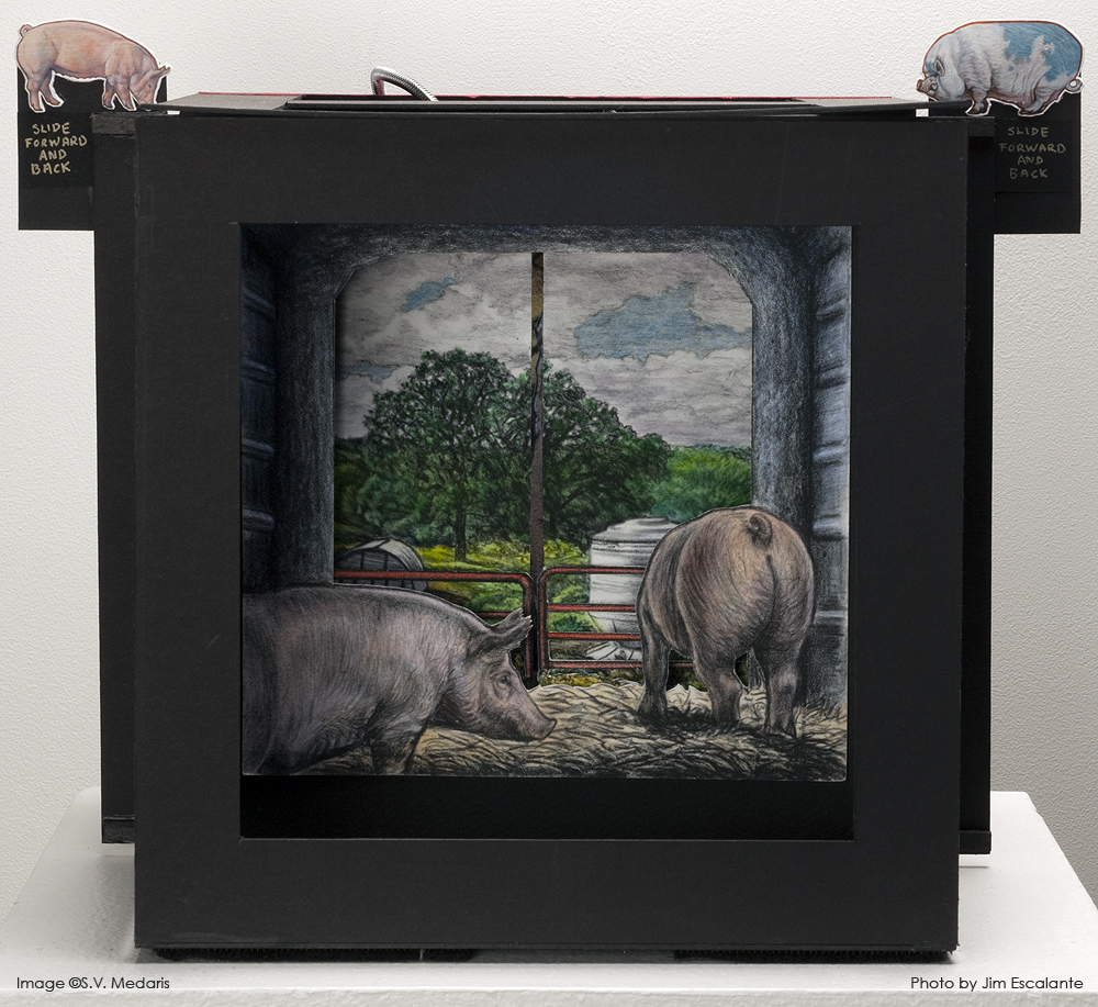 illustration of pigs looking out on pasture