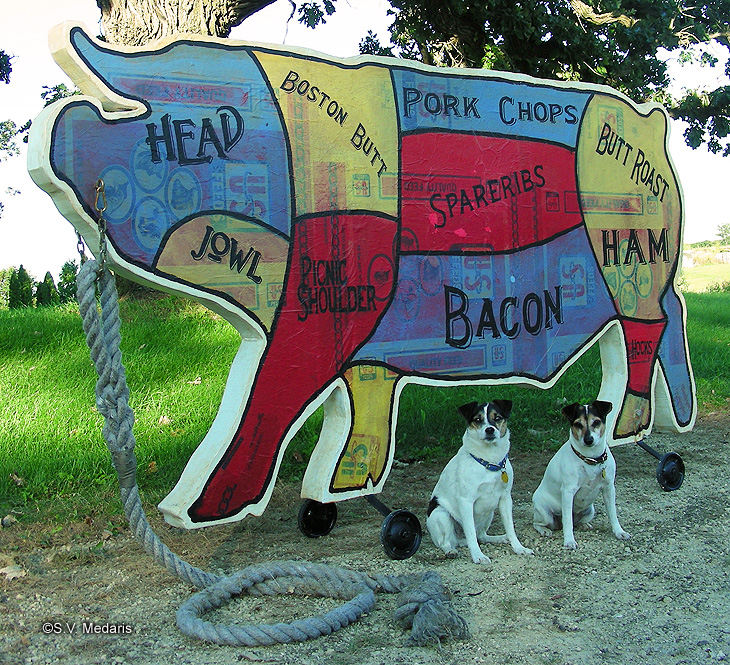 8ft pulltoy pig with pork cuts painted on side
