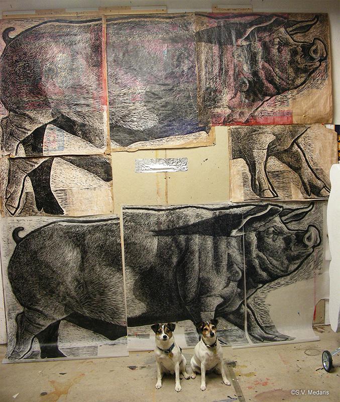 4x8ft prints of hog