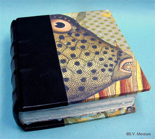thick, small leather-bound book with vintage fish illustrations in it