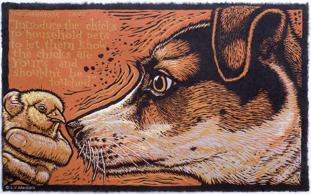 color relief print of terrier about to eat a baby chick