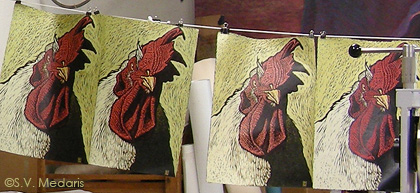 woodcut prints of giant chicken drying on line