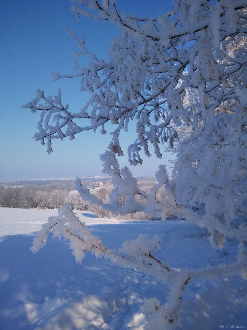 Hoarfrost landscape, December in Wisconsin