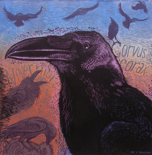 woodcut of raven by S.V. Medaris