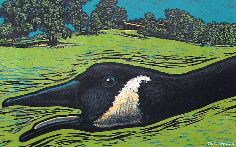 Close up of print: a goose face (woodcut by S.V. Medaris), on green background, with blue sky and Taliesin in tree line