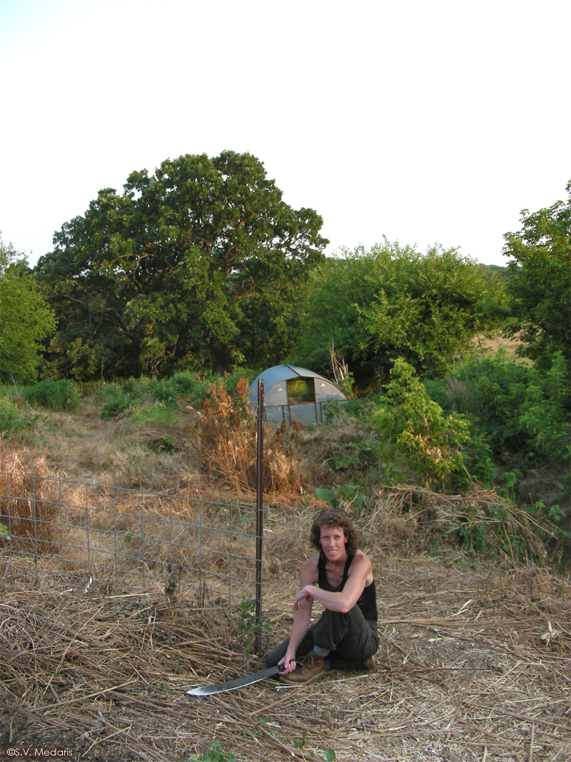 woman sits with machete in front of cleared pasture