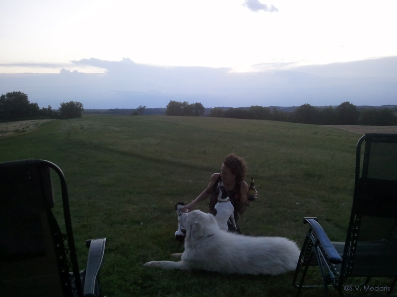 stormy sunset with dogs, woman and beer
