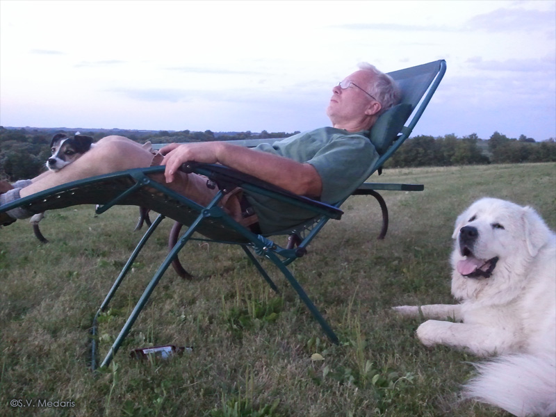 man and his dogs relaxing in evening light