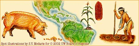 pig, map of Central America, corn, mayan farmer