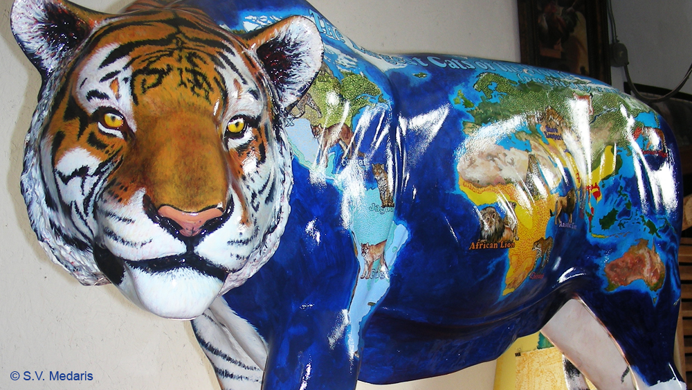close up of varnished/shiny, painted, fiberglass tiger